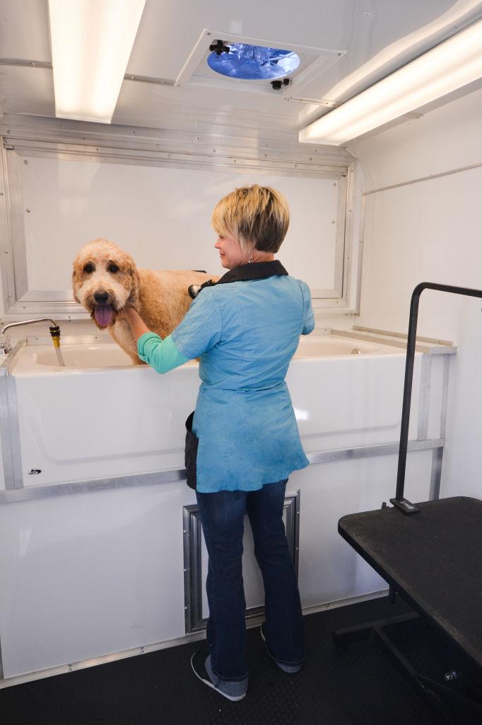 Savel Dog Grooming Trailer